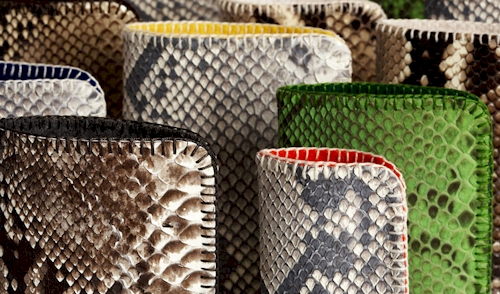 rebecca-omweg-chic-python-cases-for-your-tech-devices.jpg