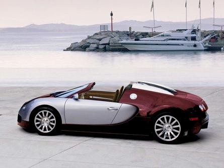 bugatti-veyron-targa_1.jpg