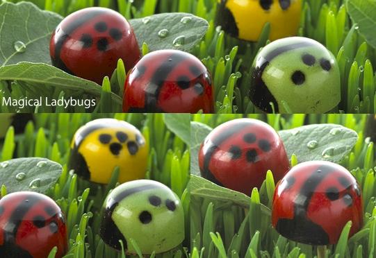 John & Kira's Magical Ladybug Gems