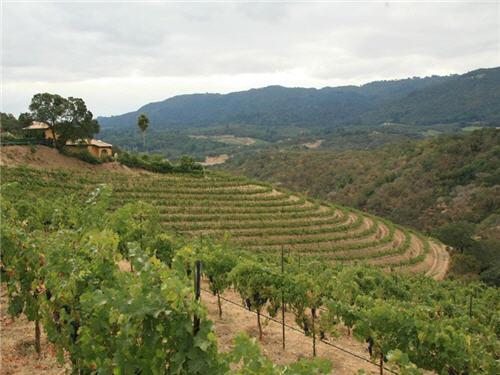 119-million-luxury-wine-country-estate-compound-glen-ellen-california-16
