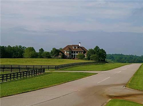$5.4 Million Gated Estate in Clermont Georgia 9