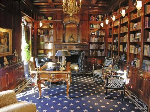 $7.9 Million Luxury Estate in Arlington Texas 6