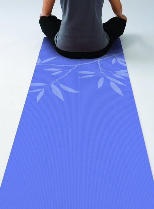 Gaiam Premium Yoga Mat 2