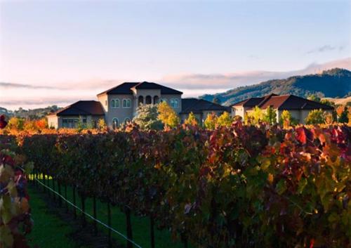 Exquisite Vineyard Estate in California 6