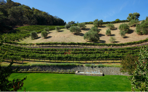 $30 Million Villa Sorriso Mansion and Vineyard Owned by Robin Williams in Napa, California  10