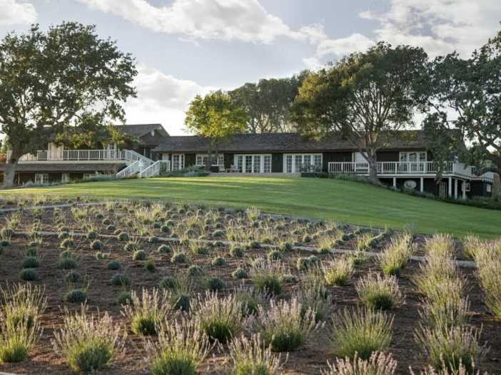 $19 Million Equestrian and Vineyard Estate in California 8