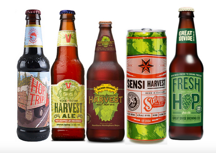 What You Need To Know About Fall Beers 2