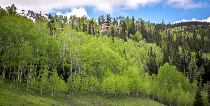 $12.7 Million Villa Montagna in Telluride Colorado 2