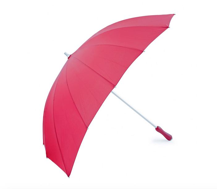 Crimson Heart Umbrella 2