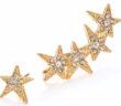 ABS by Allen Schwartz Jewelry Faceted Star Ear Crawler & Stud Earrings Set